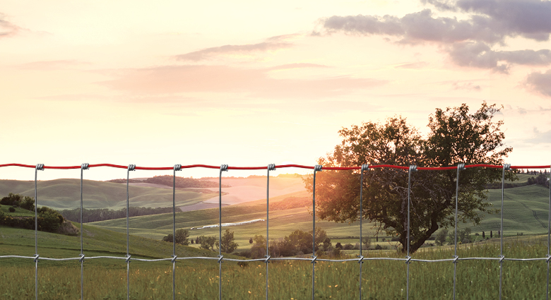 Fencing Solutions for Hilly Terrain | The Red Brand Post