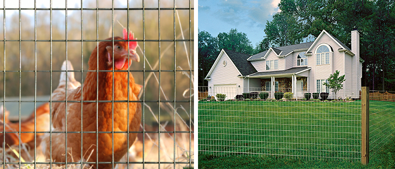 Welded Wire Utility Fence A Diverse Solution The Red