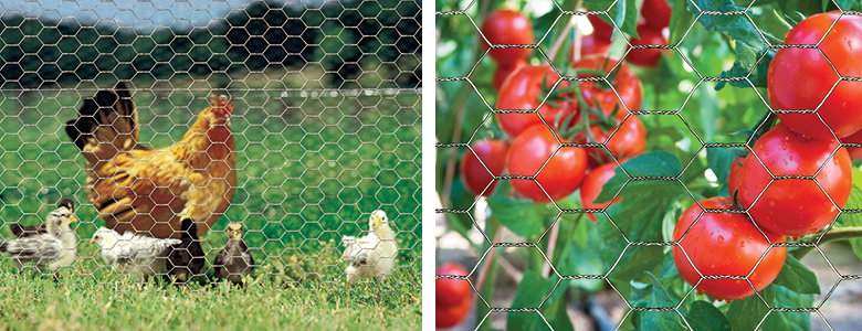 Poultry Netting uses