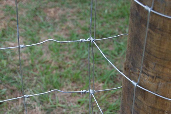 Fence Basics