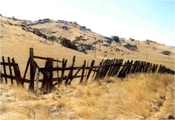 fencing_woodenfence