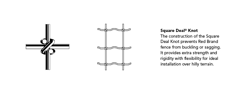 Square Deal Knot illustrations